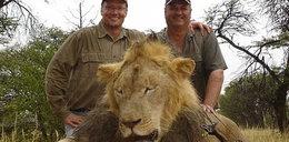 Zabójca sławnego lwa na celowniku. Wiadomo, kim jest