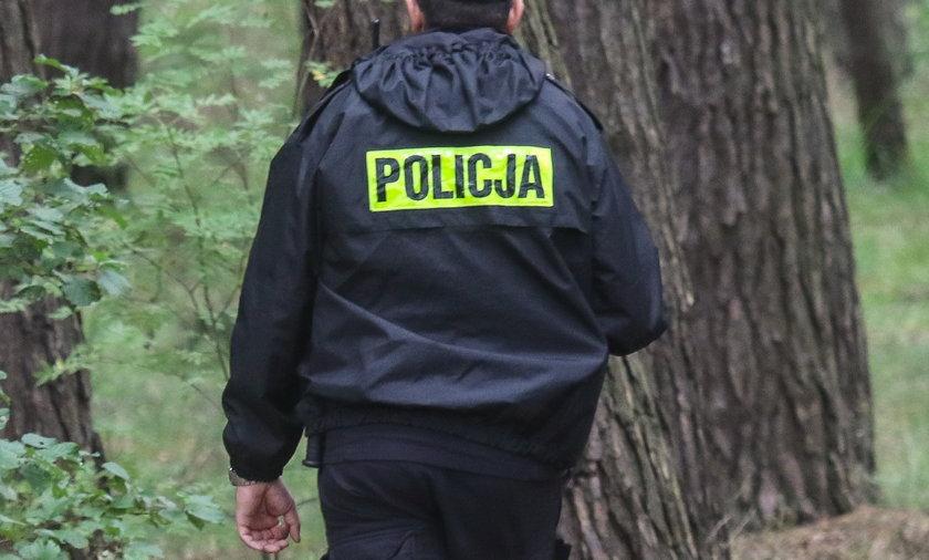 Nie żyje mężczyzna wycinający drzewo w lesie w gminie Chodel.