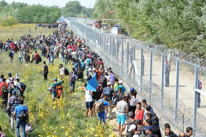 Zamkinięta granica węgiersko-serbska i tłumy imigrantów