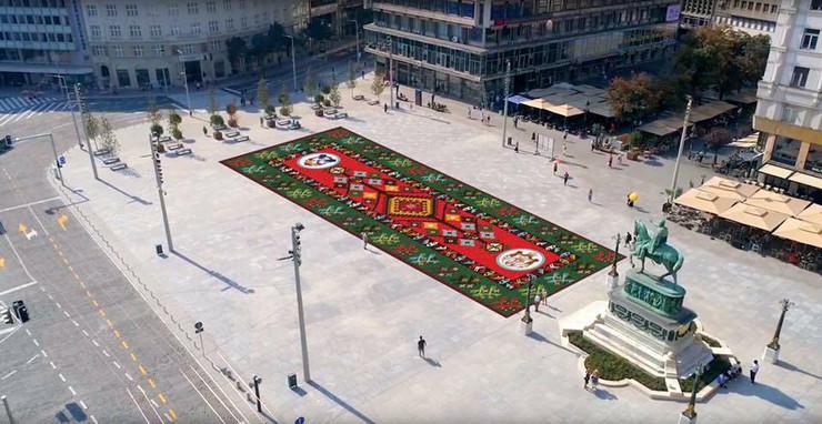 Cvetni tepih na Trgu republike
