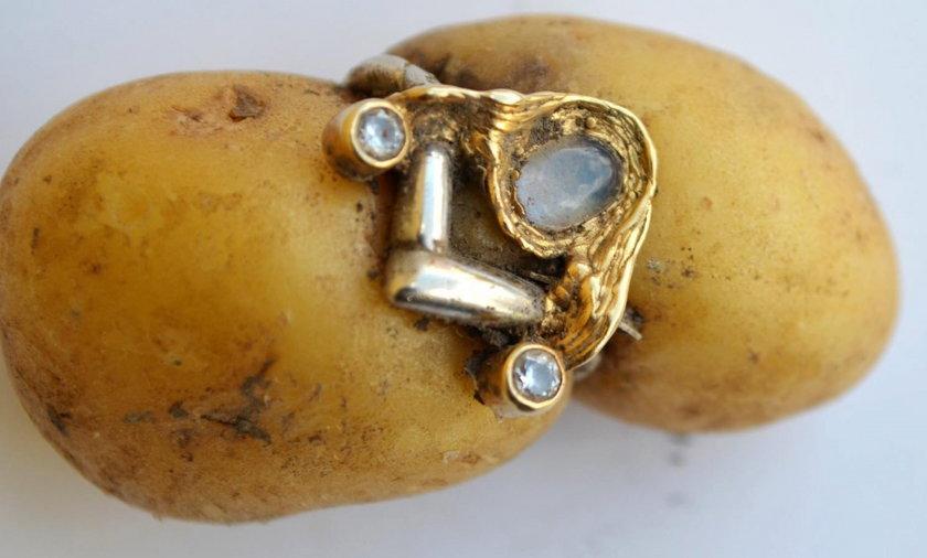 Historia jednego ziemniaka.