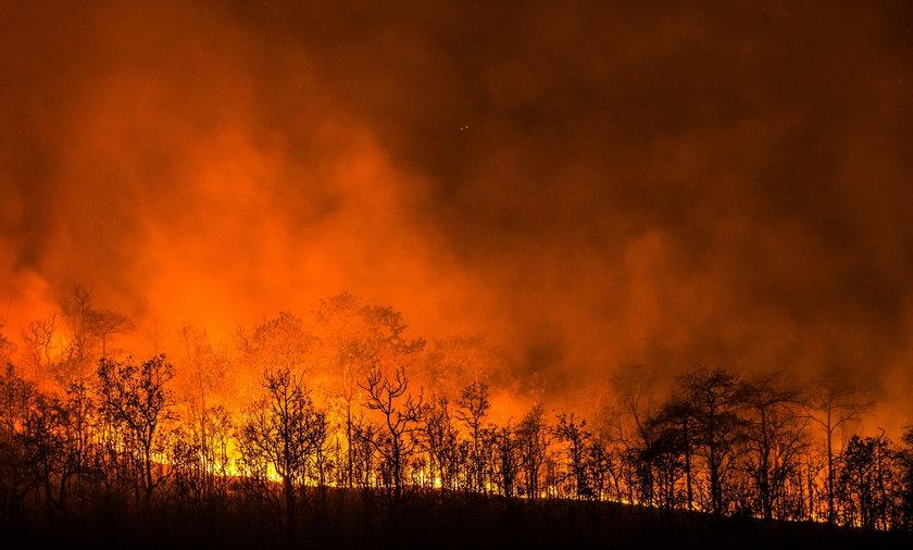 Pożar w Chorwacji wciąż się rozprzestrzenia
