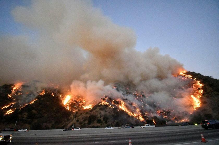 Pożary w USA