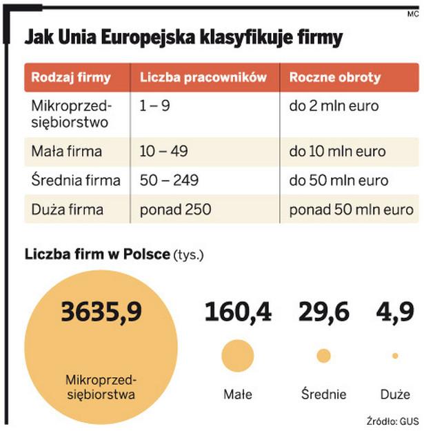 Jak Unia Europejska klasyfikuję firmy