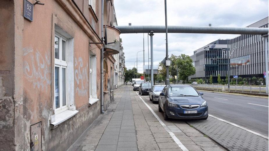 Poznań: drzewa wracająna ulicę Królowej Jadwigi. Remont obejmie też chodnik!