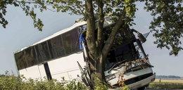 Autobus roztrzaskał się na drzewie! Śmierć i ból po tragedii pod Kazanowem