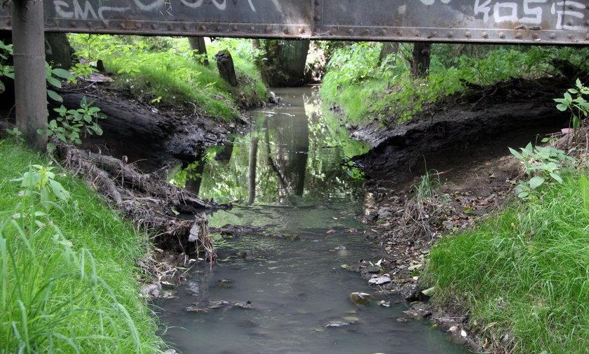 rzeka sudoł