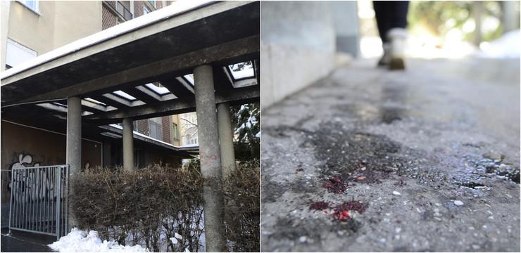 Dimitrium tucovica's commando murder