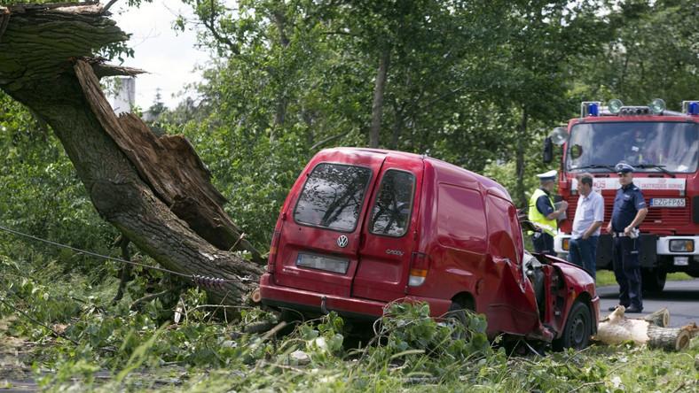 Zgierz. Jedna osoba nie żyje, a dwie zostały ranne. Konar drzewa spadł na jadący samochód