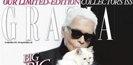 Kotka Lagerfelda debiutuje na okładce