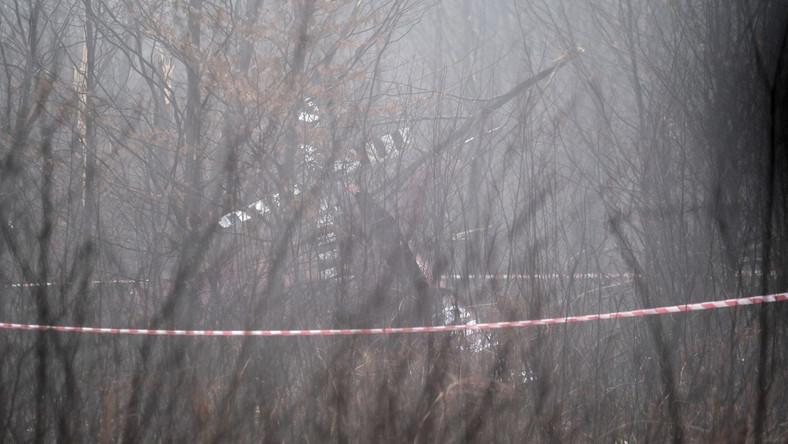 Miejsce wypadku prywatnego śmigłowca w pobliżu rzeki Dokawy PAP/Andrzej Grygiel