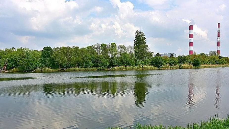 źródło: Wikimedia Commons / Adrian Grycuk