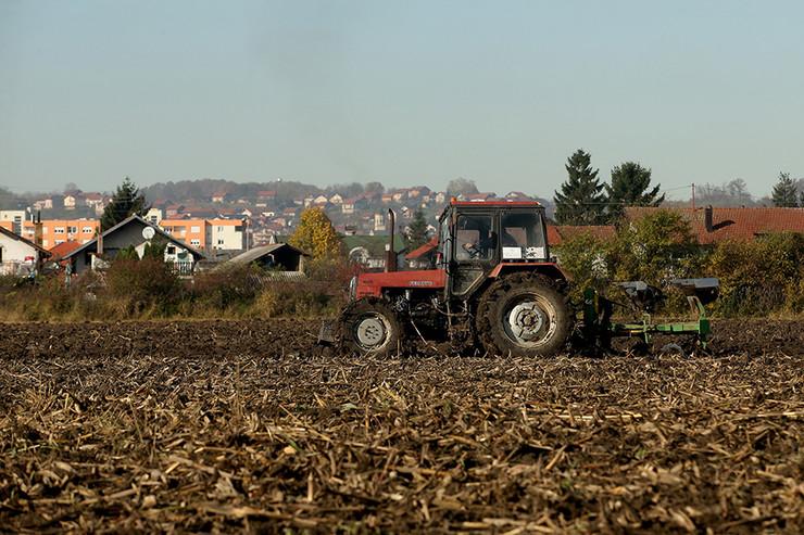 poljoprivreda-07-foto-S-PASALIC