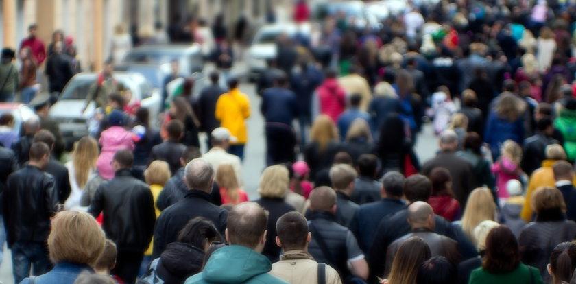 W tej branży w czasie epidemii zarobki jeszcze wzrosły! Imponujące kwoty