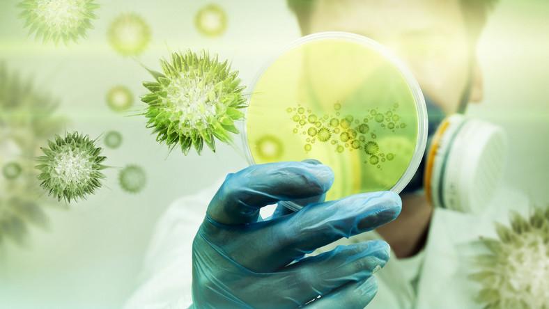 Naukowie w laboratorium bada wirusy i bakterie