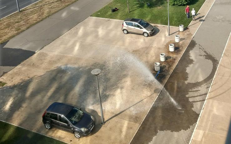 hidrant novi beograd belvil