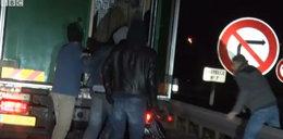 Wskoczyli do ciężarówki i stanęli oko w oko z bestią
