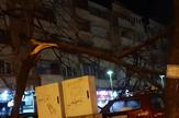 Kraljevo 01 - Olujni vetar lomio i drveće - Foto N. Božović