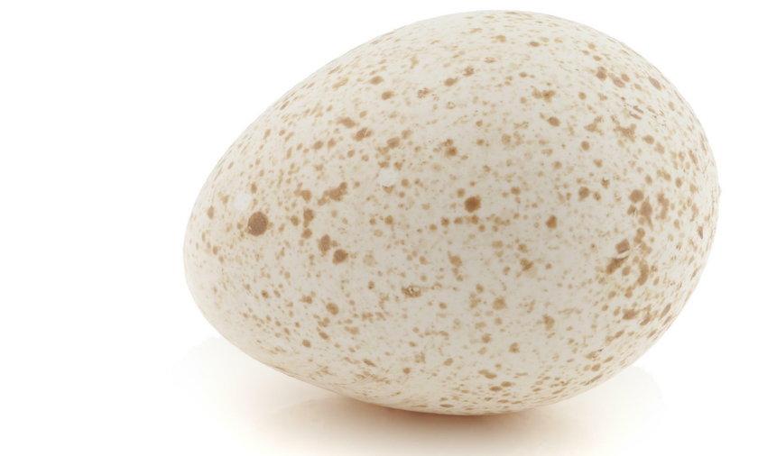 Indycze jajka