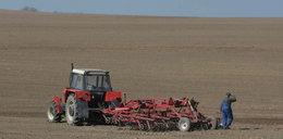 PiS nie ruszy KRUS-u ani podatku rolnego