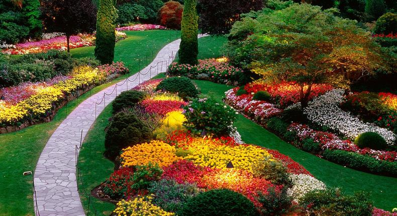 When it comes to gardening, you are limited by nothing but your imagination.