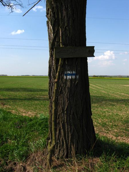 """""""Znak"""" wskazujący drogę do grodu w Biskupicach"""