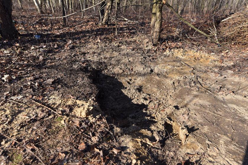 Noworodek zakopany w lesie w Zgierzu