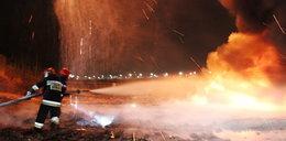 Nie ma śladów podpalenia mostu Łazienkowskiego
