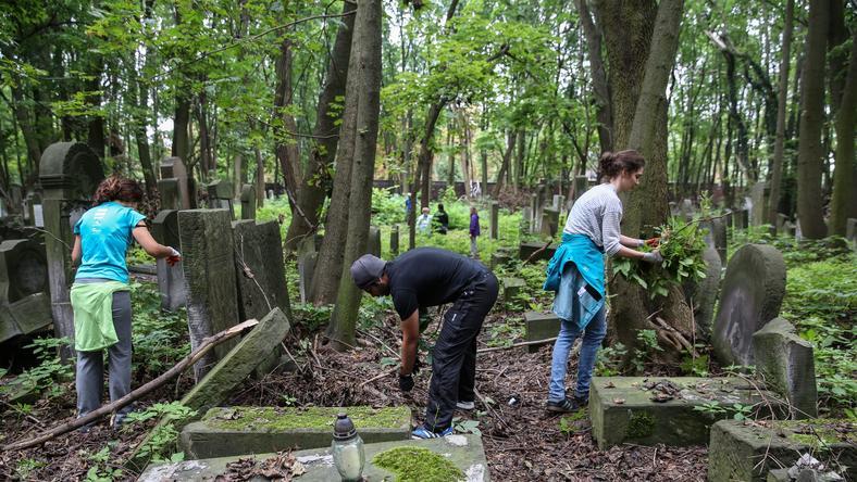Trwa akcja sprzątania Cmentarza Żydowskiego w Warszawie