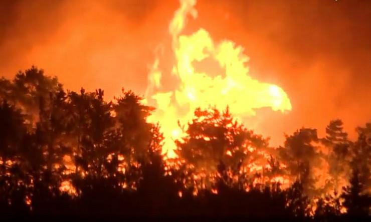 Južna Koreja šumski požar