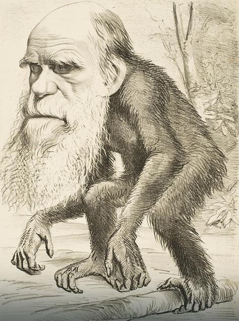 Ruganje Darvinu se nastavlja...