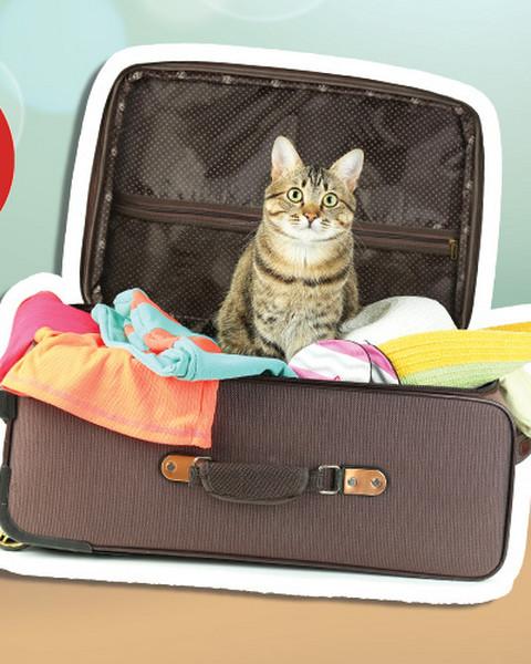 8ad8544d832c4 Zastanawiasz się jaką walizkę kupić? Mamy dla ciebie 5 porad. Autor:  Paulina Kurowska · Wyniki konkursu: spakuj z nami walizkę i wygraj  wakacyjne nagrody!