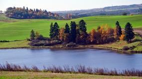 Pejzaż pełen wspomnień - Oberland, czyli Mazury Zachodnie: Gładysze, Słobity, Morąg i inne historie