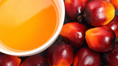 Natural Remedies: the benefits of kernel oil