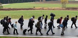 Chcą wcisnąć Polsce więcej uchodźców