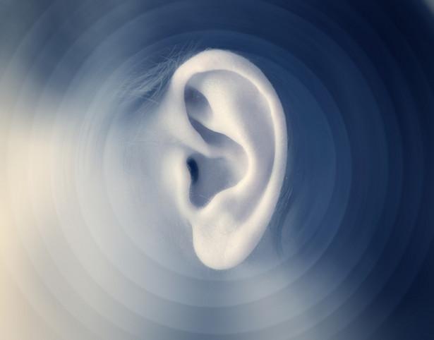 Małżowina uszna