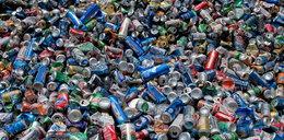 Koniec problemu z segregacją śmieci? Nowy pomysł
