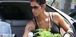 Halle Berry uprawia ogródek