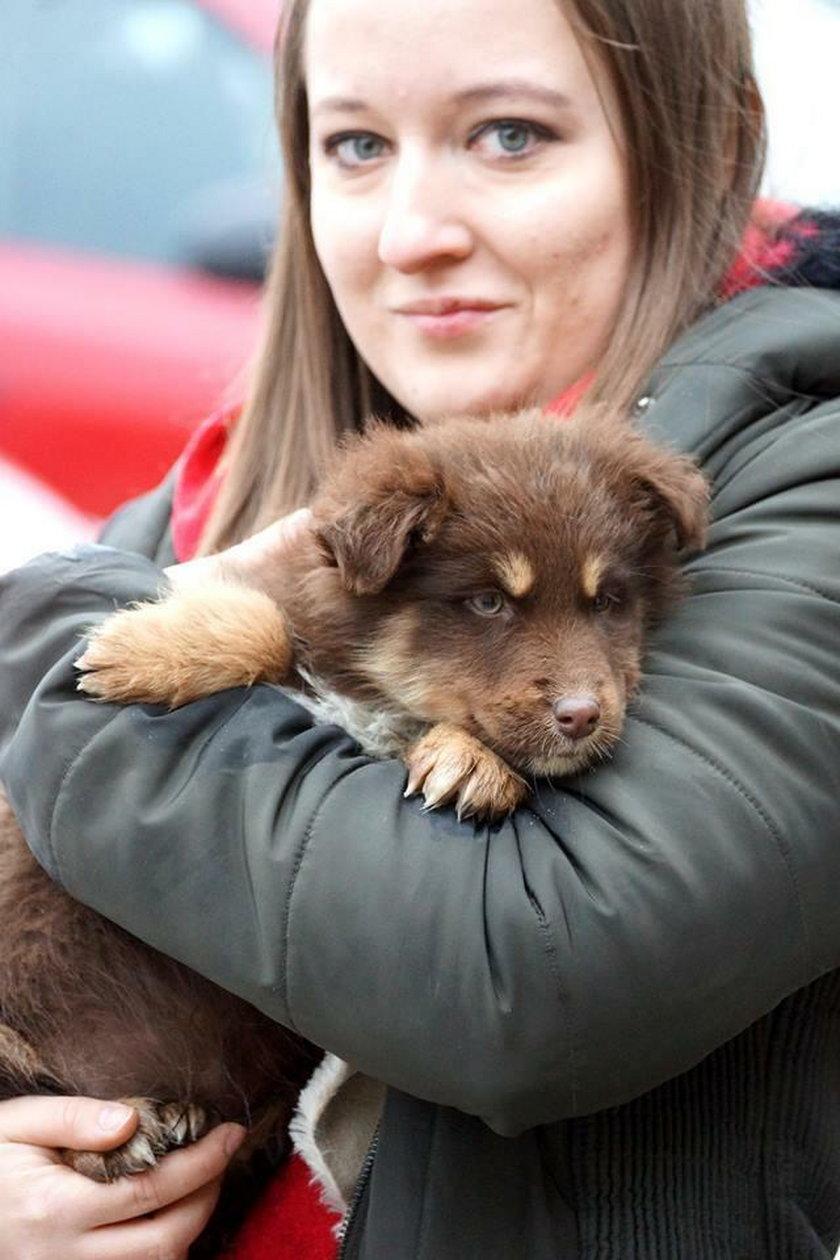 Mnóstwo psiaków znalazło domy dzięki Czytelnikom Faktu