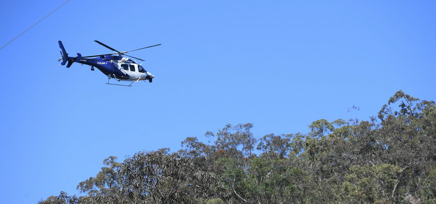 Australia: Trzylatek przeżył sam trzy doby w lesie