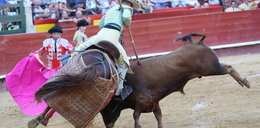 Byk zaatakował konia na korridzie. Mocne zdjęcia