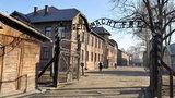 Nowa wystawa w Auschwitz