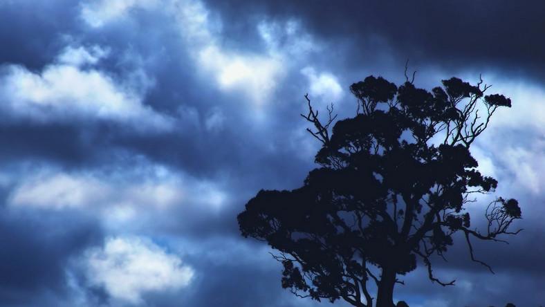 Wieczorem i w nocy w Lubuskiem intensywne opady i burze