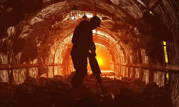 Wynika z niego, że kwestia przyszłych miejsc pracy dla ludzi zwalnianych w sektorze górnictwa traktowana jest po macoszemu.