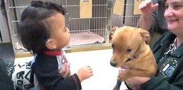 Chłopiec z wodogłowiem i pies z tą samą chorobą