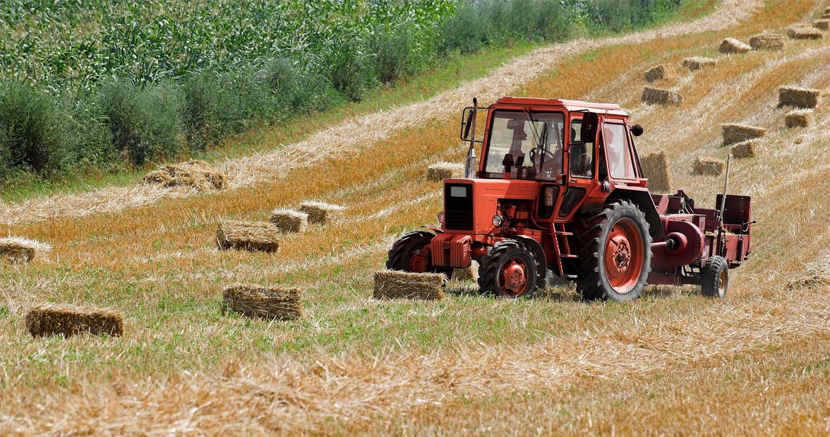 Już w sierpniu ARiMR rozpocznie przyjmowanie wniosków o dofinansowanie działających na wsi mikrofirm