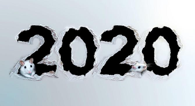 Kineski horoskop 2020
