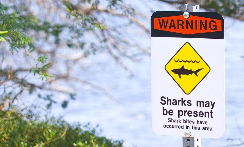 Rekiny atakują na Wyspach Kanaryjskich