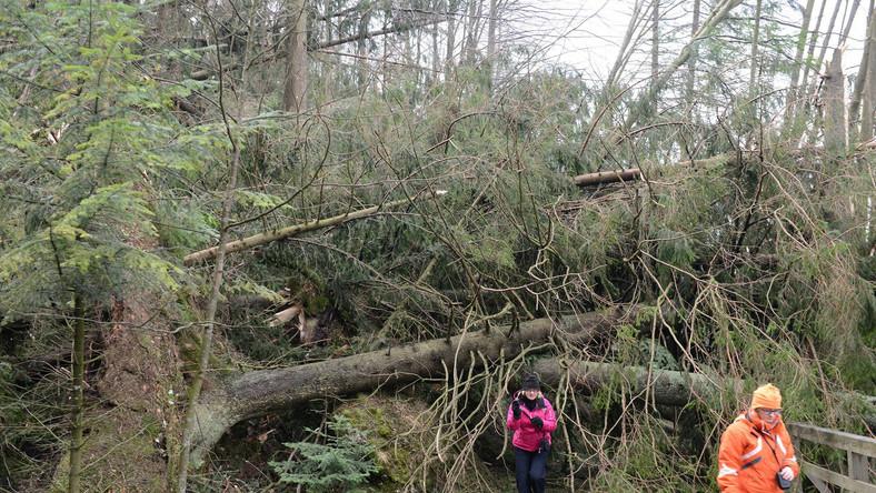 Jeśli ktoś się zdecyduje wyjść w góry, powinien być ostrożny, bo niektóre drzewa mogą pochylać się nad szlakami i grozić upadkiem. Szlaki będą natomiast bezwzględnie zamykane tam, gdzie będą trwały prace udrażniające