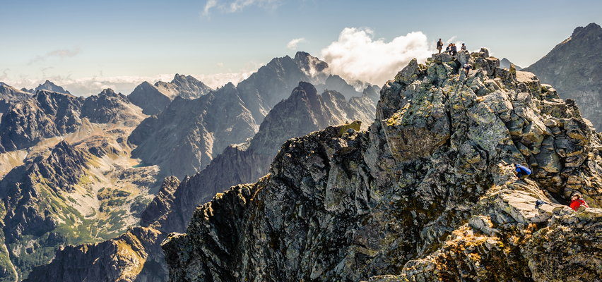 Dantejskie sceny w Tatrach. Turyści robią to w lesie